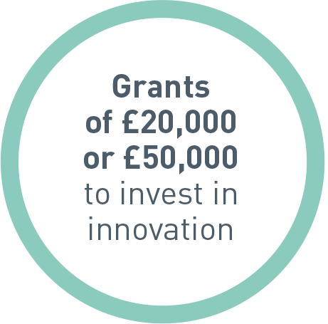 This images shows the level of grant funding available.